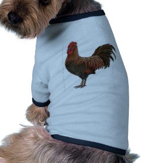 Gallo rojo camisas de mascota