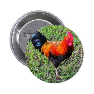 Gallo-UNo-Doodle-Haga Pin Redondo De 2 Pulgadas