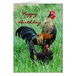 Gallo y gallina del feliz cumpleaños tarjetas