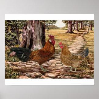 Gallo y gallina sicilianos del ranúnculo póster