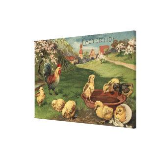 Gallo y polluelos impresión de lienzo
