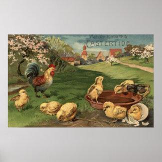 Gallo y polluelos posters