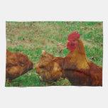 Gallo y sus pollos toallas de mano
