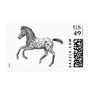 Galloping Appaloosa Foal Postage