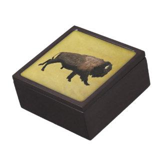 Galloping Bison Jewelry Box
