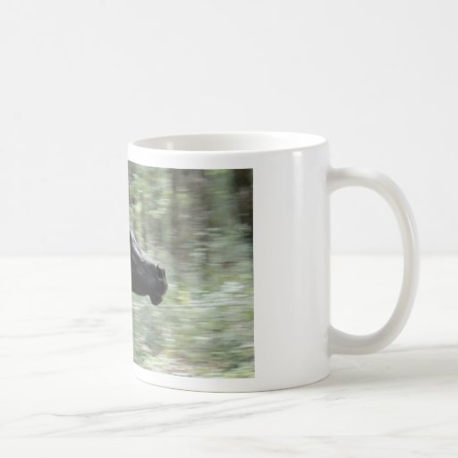 Galloping Black Arabian Mare Coffee Mugs