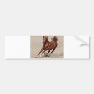 Galloping Brown Chestnut Horse Kicks Up Sand Car Bumper Sticker