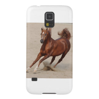 Galloping Brown Chestnut Horse Kicks Up Sand Case For Galaxy S5
