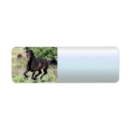 Galloping Chestnut Horse Label