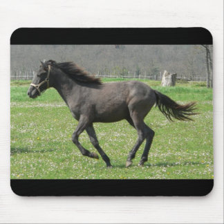 Galloping Colt Mouse Pad
