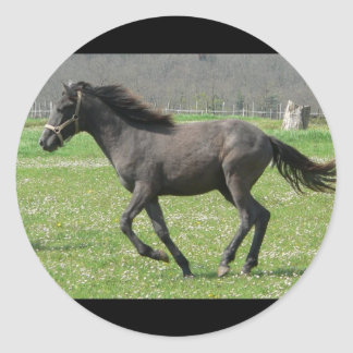 Galloping Colt Sticker