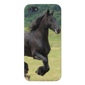 Galloping Friesian Horses Covers For iPhone 5