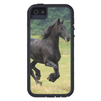 Galloping Friesian Horses iPhone 5 Covers