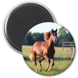 Galloping Horse 2 Inch Round Magnet