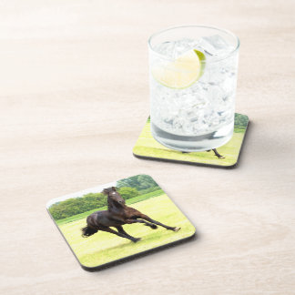 Galloping Horse Drink Coasters