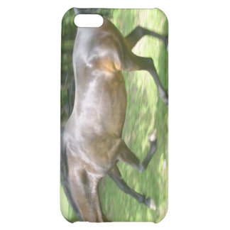 Galloping Horse iPhone 5C Cases
