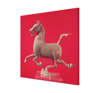 Galloping horse with one Hoof Resting on a Canvas Prints
