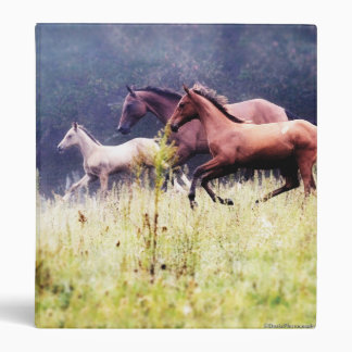 Galloping Horses Photography 3 Ring Binder