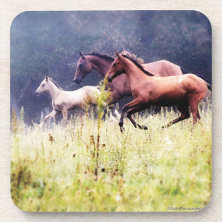 Galloping Horses Photography Drink Coaster