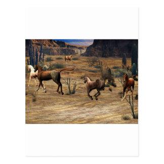 Galloping Horses Postcard