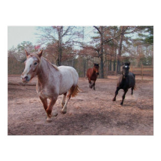 Galloping Horses Posters