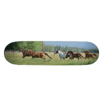 Galloping Horses Skateboard