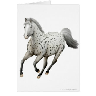 Galloping Leopard Appaloosa Horse Card