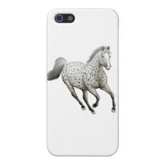 Galloping Leopard Appaloosa Horse iPhone Case