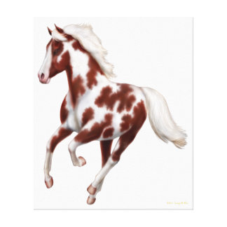 Galloping Paint Horse Wrapped Canvas