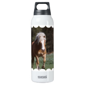 Galloping Palomino 16 Oz Insulated SIGG Thermos Water Bottle