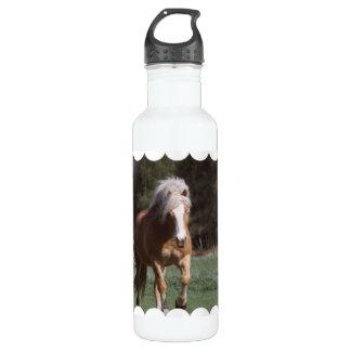 Galloping Palomino 24oz Water Bottle