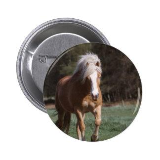 Galloping Palomino  Button
