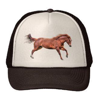 Galloping Sorrel Leader Mare Horse Design Trucker Hat
