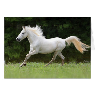 Galloping White Horse Card