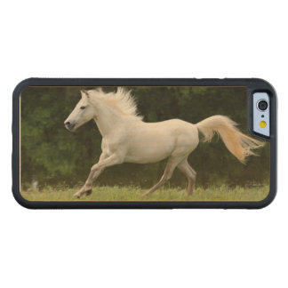 Galloping White Horse Carved Maple iPhone 6 Bumper Case