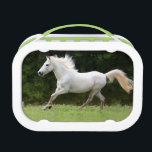 """Galloping White Horse Lunch Box<br><div class=""""desc"""">This beautiful equestrian photograph features a galloping gray Caspian horse with a long flowing mane and tail in a green pasture against a lake background. This equine image is perfect for anyone who loves horses and ponies from hunter jumper riders to the dressage or country cowgirl. Perfect for any little...</div>"""