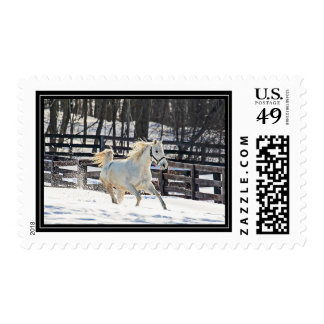 Galloping White Horse Postage