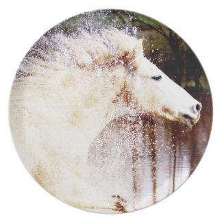 Galloping White Water Horse Melamine Plate