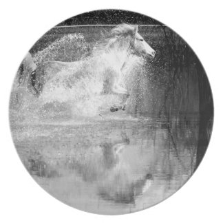 Galloping White Water Horse Plate