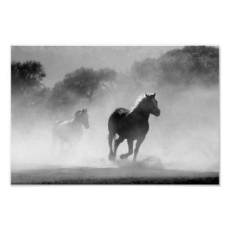 Galloping Wild Horse Print
