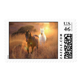 Galloping Wild Horses Postage Stamp