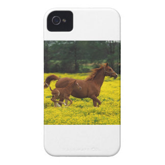 Galloping With Mama iPhone 4 Cover