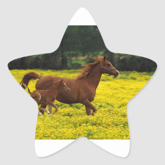 Galloping With Mama Star Sticker