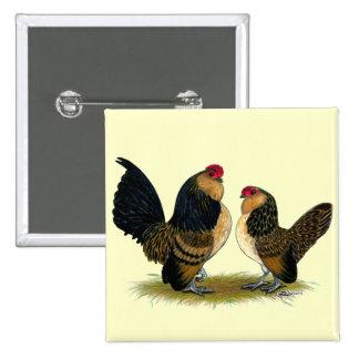 Gallos belgas de los d'Anvers:  Codornices Pin Cuadrada 5 Cm
