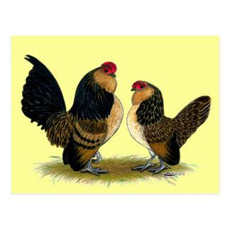 Gallos belgas de los d'Anvers:  Codornices Tarjetas Postales