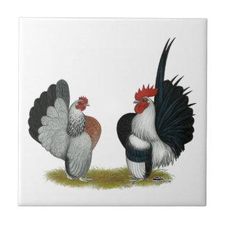 Gallos de Serama Azulejo Cuadrado Pequeño