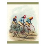 Gallos del montar a caballo tarjetas postales