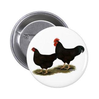 Gallos del rojo de Rhode Island Pin Redondo 5 Cm
