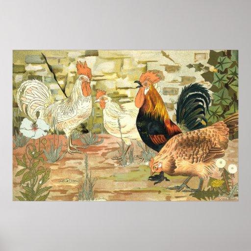 Gallos y gallina póster