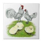 Gallos y polluelos de Rosecomb Azulejo Cerámica